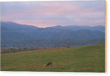 Sunrise In Cades Cove Wood Print by Dan Sproul