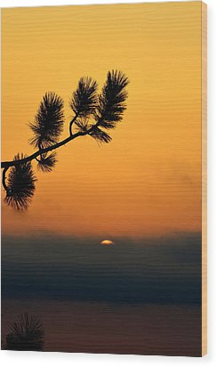 Wood Print featuring the photograph Sunset At Yosemite by Rima Biswas
