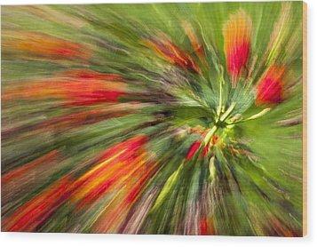 Swirl Of Red Wood Print by Jon Glaser