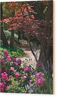The Garden Path Wood Print by Michele Myers