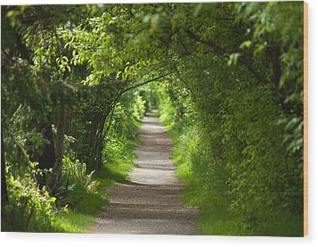 The Green Tunnel Wood Print