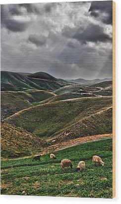 The Lord Is My Shepherd Judean Hills Israel Wood Print