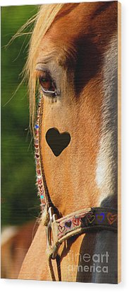 The Love Of A Horse Wood Print by France Laliberte