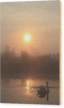 Wood Print featuring the photograph The Peace Of Dawn by Linsey Williams