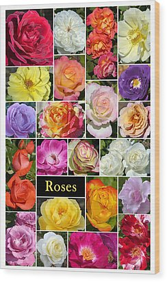 Wood Print featuring the photograph The Wonderful World Of Roses by Cindy McDaniel