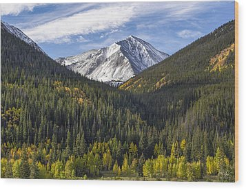 Torreys Peak  Wood Print