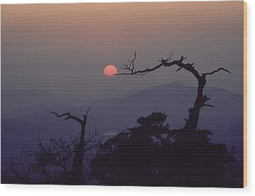 Tree And Sun From Mt Scott Wood Print