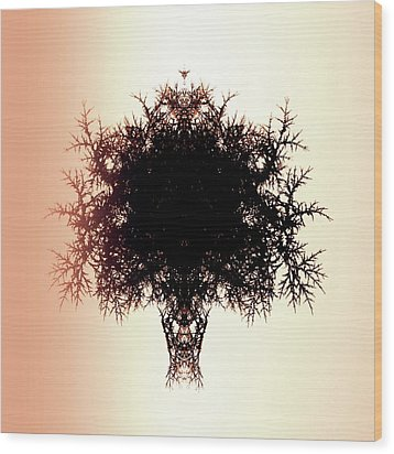 Tree Of Twigs Wood Print by Sharon Lisa Clarke