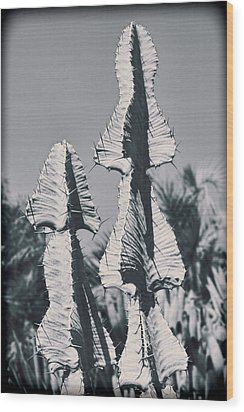 Twin Towers Wood Print by Kelley King