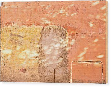 Weathered Wall Wood Print by Tom Gowanlock