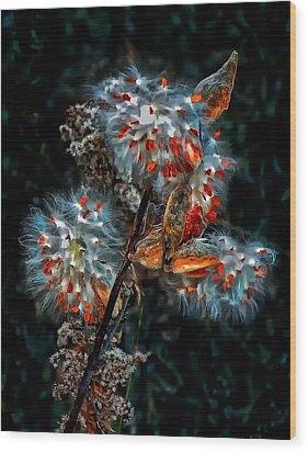 Weed Galaxy  Wood Print by Steve Harrington