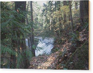 Whatcom Falls  Wood Print