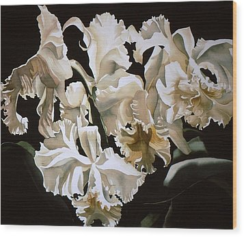 white Cattleya orchids Wood Print by Alfred Ng