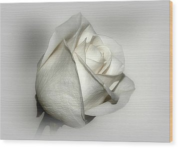 White Rose Wood Print by Sandy Keeton