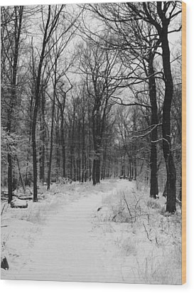 Winter Forest Wood Print by Eva Csilla Horvath