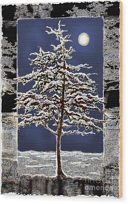 Winter Moon Wood Print by Ursula Freer