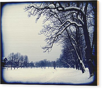 Winter Wood Print by Nina Ficur Feenan