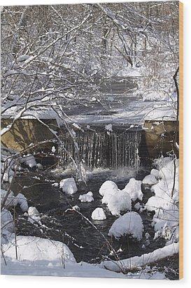Winter Waterfall Wood Print by Patricia McKay