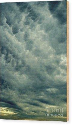 Winters Last Storm Wood Print by Michael Hoard