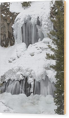 Yellowstone Falls Wood Print by David Yack
