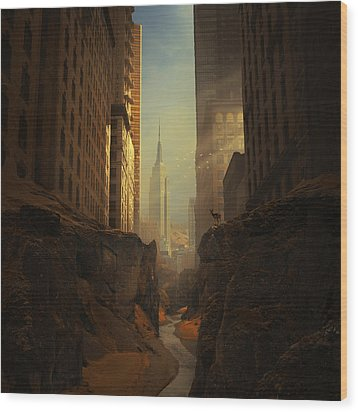 2146 Wood Print