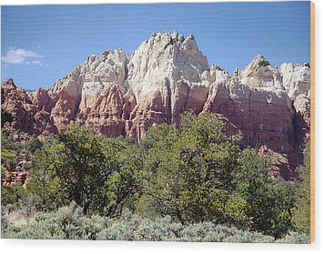 Capitol Reef National  Park Cathedral Valley Wood Print by Mark Smith