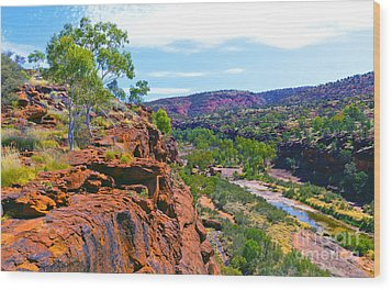 Palm Valley Central Australia  Wood Print by Bill  Robinson