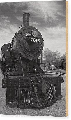 Wood Print featuring the photograph 2645 by Chuck De La Rosa