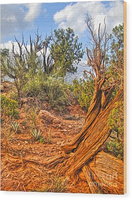 Sedona Arizona Wood Print by Gregory Dyer