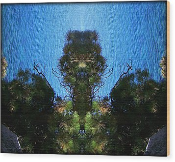 Abstract 50 Wood Print by J D Owen