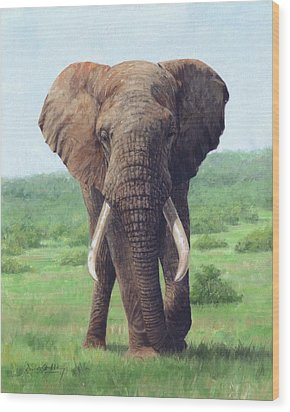 African Elephant Wood Print by David Stribbling