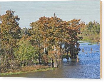 Atchafalaya Basin In Louisiana Wood Print