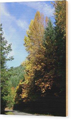 Autumn 2 Wood Print by J D Owen