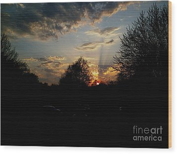 Beauty In The Sky Wood Print