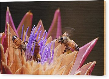 Wood Print featuring the photograph Bees In The Artichoke by AJ  Schibig