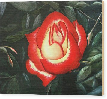 Betty Boop Rose Wood Print by June Holwell