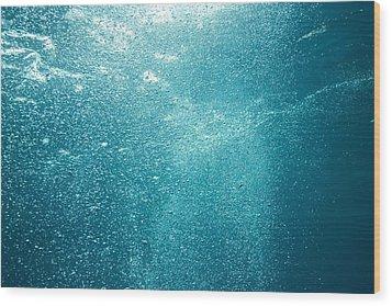 Bubbles Underwater Wood Print by Stuart Westmorland