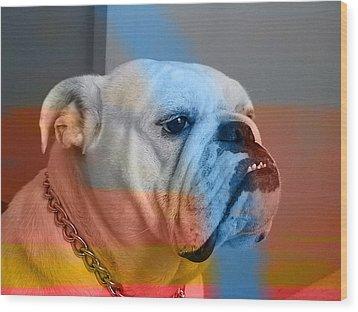 Bulldog  Wood Print by Marvin Blaine