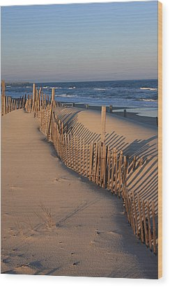 Cape Hatteras Dunes  Wood Print by Mountains to the Sea Photo