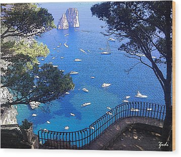 Wood Print featuring the photograph Capri by Ze  Di