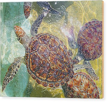 Cayman Turtles Wood Print by Carey Chen