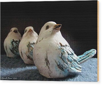 3 Cheeky Chicks 2 Wood Print by Danielle  Parent