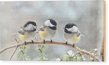 3 Chickadees On A Snowy Day Wood Print