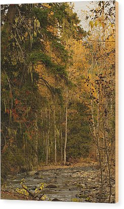Fall At Sheep Creek Wood Print by Loni Collins