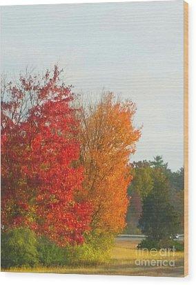 Fall Leaves Wood Print by Rose Wang