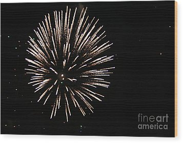 Fire Works On The Fourth Of July  Wood Print by Larry Stolle