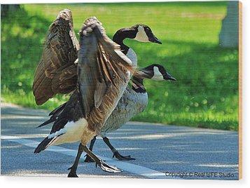 Geese Crossing Wood Print