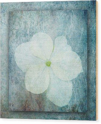 Hydrangea Wood Print by Lynn Bolt