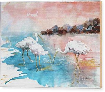 Ibis On The Beach Wood Print by Joyce Allen