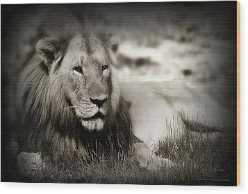 Lion Wood Print by Christine Sponchia